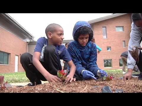 Discovery STEM Academy Earth Day