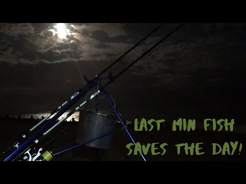Sea Fishing At Night In Eastbourne UK - Last Minuite Fish Saves The Day !