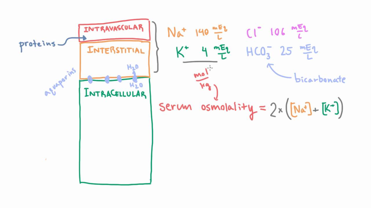 Estimating Serum Osmolality using a Simple Formula - YouTube