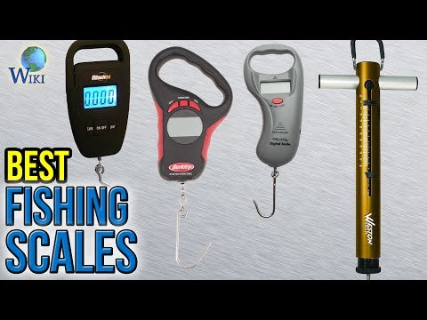 9 Best Fishing Scales 2017