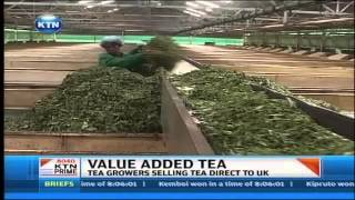 Nyeri tea farmers now selling their tea directly to European markets