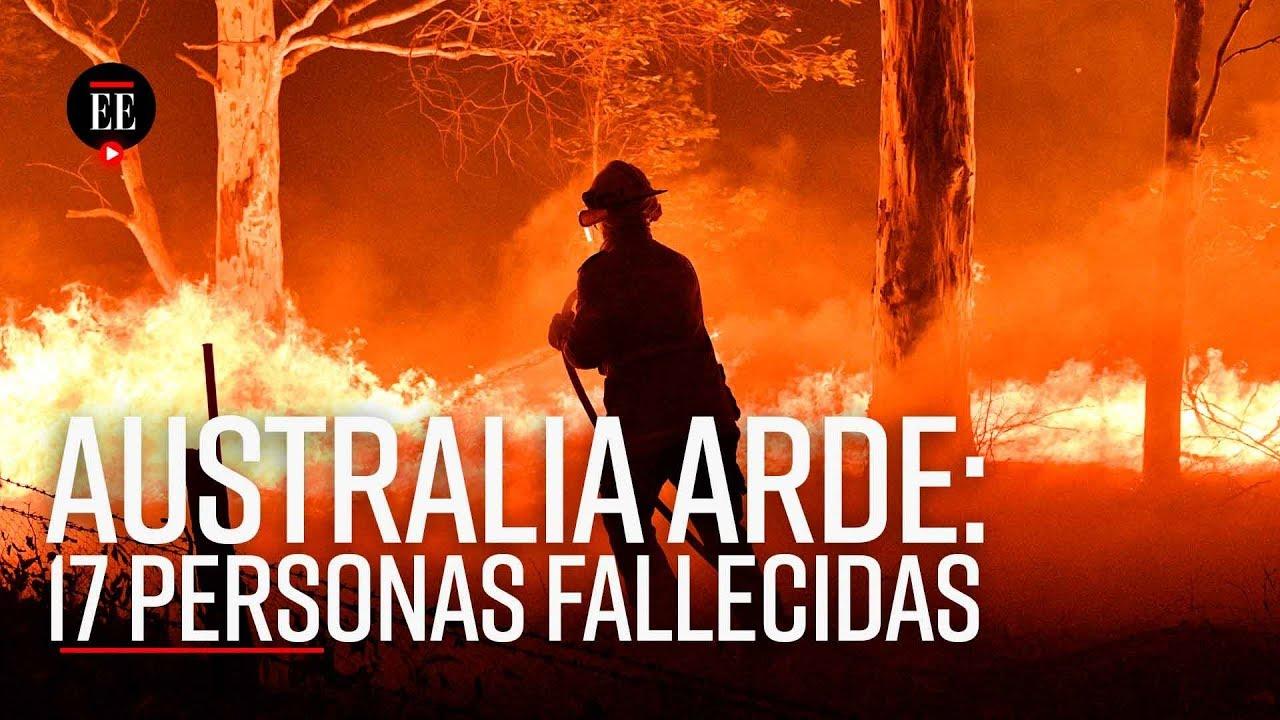 Incendios en Australia acaban con 12 millones de hectáreas de bosque - El Espectador