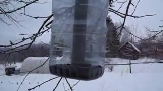 Пчеловодство. Кормушки для птиц