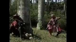 Culto A Los Orishas Rey de Reyes Botanica Ile Orunmila
