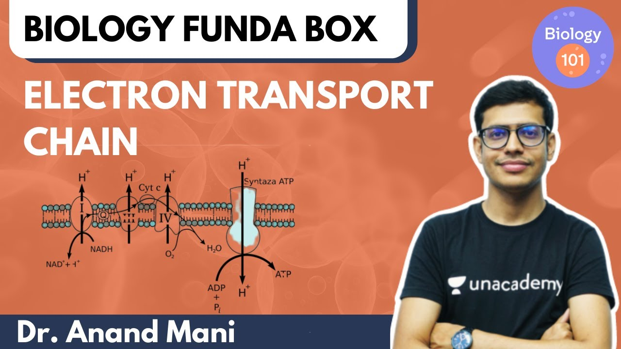 Electron Transport Chain | Biology 101 | NEET UG | Dr. Anand Mani