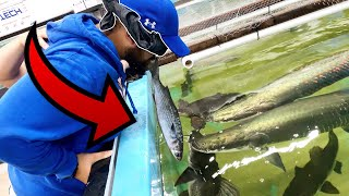 FISH SUCKS on FACE while BLIND FOLDED FEEDING!