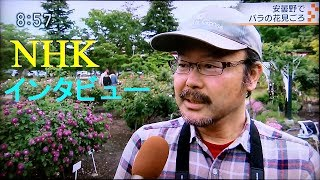 Television broadcast video on the way, NHK TV(Japan Broadcasting Co...