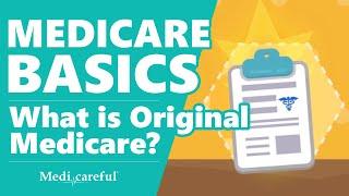 What is Original Medicare? ǀ  Medicare Basics