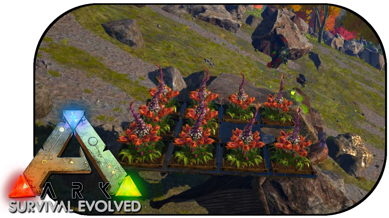 Ark survival evolved ep 75 plant species x op youtube for Plant x ark aberration