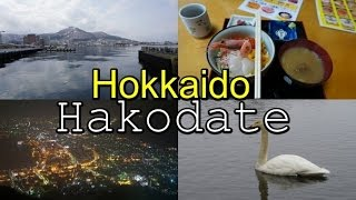 HOKKAIDO Exploring Hakodate 函館 Japan Travel Vlog 4