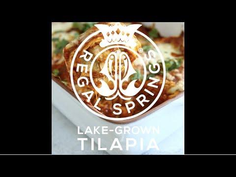 Tilapia Enchiladas