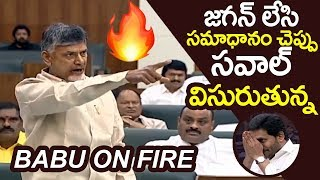 Chandrababu naidu Aggressive Comments On CM Jagan in AP Assembly | YS Jagan | Filmylooks