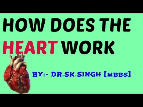 Cardiac cycle for NEET || AIPMT ||AIIMS||medical entrance|| CBSE CLASS 11th ||Biology .