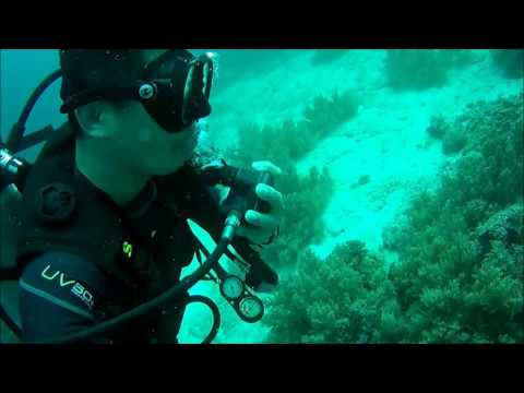 Boy's fun diving BOHOL 2016