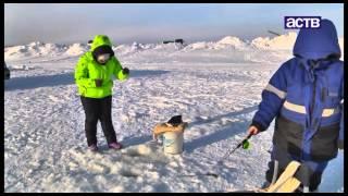 Рейтинг блюд из самой популярной у сахалинцев зимней рыбы - наваги