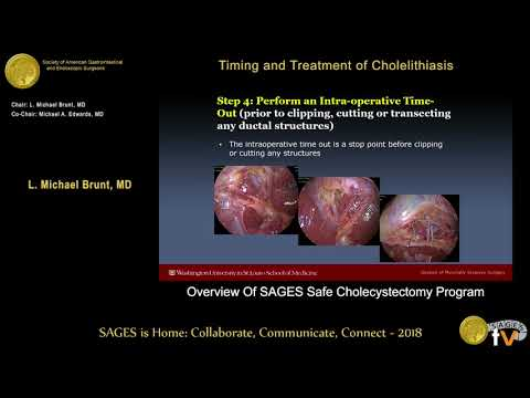 Overview Of SAGES Safe Cholecystectomy Program