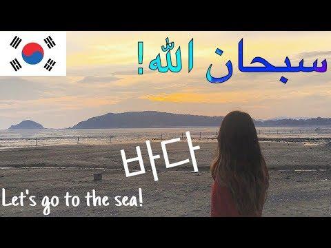 바다로 떠나요│البحر في كوريا│Seas in Korea