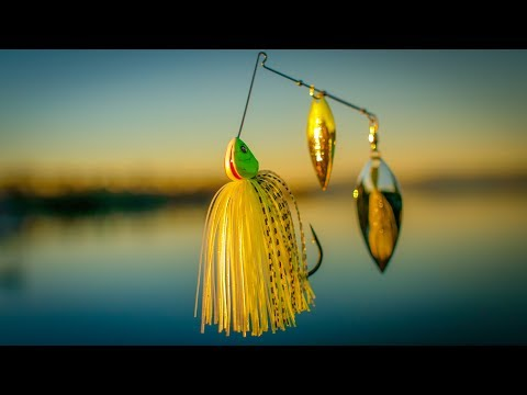 Spring Spinnerbait Fishing Tips and Tricks From Shallow To Deep