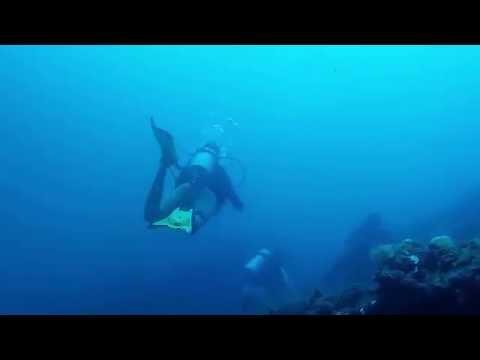 Coron Pal - 1st Dive