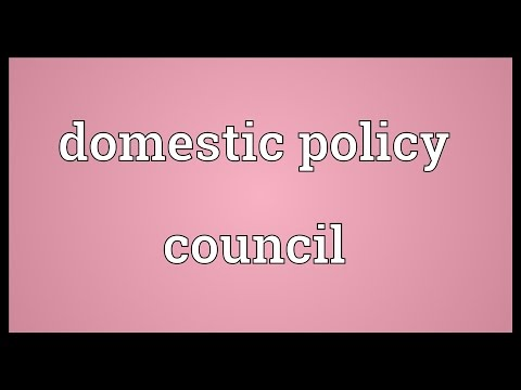 Domestic policy council Meaning