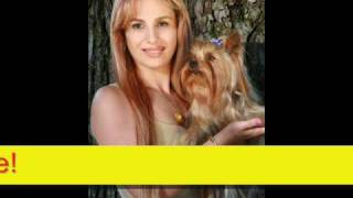 Sabrina Parisi And Her Famous Yorkshire Terriers