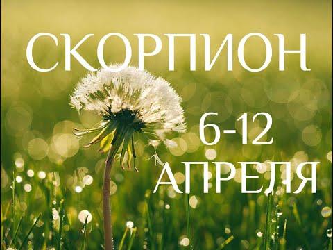 СКОРПИОН♏❤. Таро-прогноз 6-12 апреля. Гороскоп Скорпион/Tarot Horoscope Scorpio✨ © Ирина Захарченко.