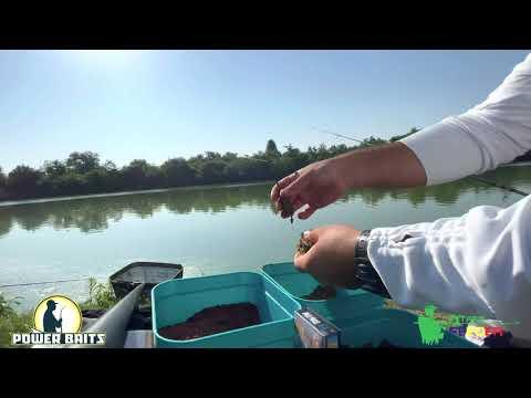 Pescuit La Method Feeder Pe Canicula Dupa Ciortan