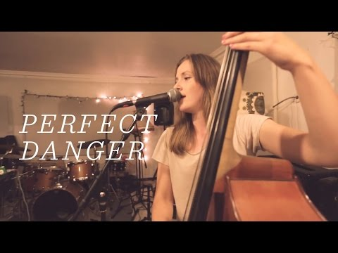 Ellen Andrea Wang - Perfect Danger