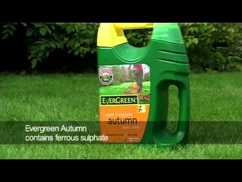 Prepare Lawn For Winter how to prepare your lawn for winter - youtube