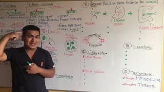 lépésről lépésre a gyermek giardiasis kezelése
