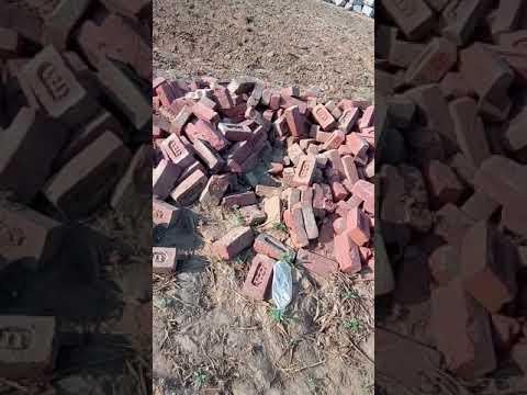 Ultra tech cement mohanpura kotputli Jaipur ki dadagiree