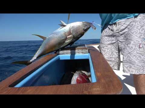 HAPHAZARD SPORT FISHING