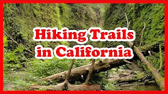 5 Top-Rated Hiking Trails in California | United States Hiking Trails