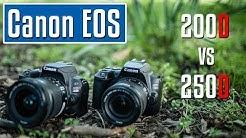 Canon EOS 250D vs EOS 200D | welche ist die beste Einsteigerkamera? Test (deutsch)