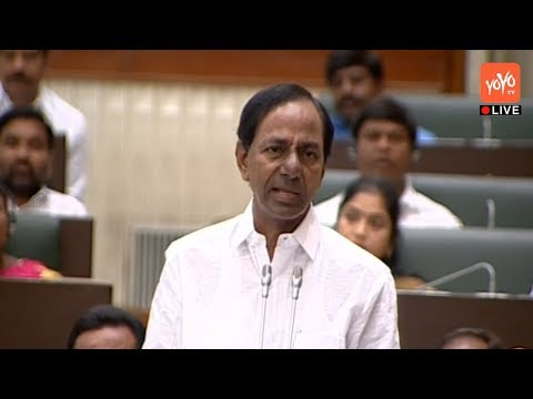 Telangana Assembly Live | Winter Session 2017 | 13-11-2017 | YOYO TV Channel