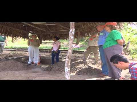 Don Diometrio Integrated SHI Farm Panama 1-18-13