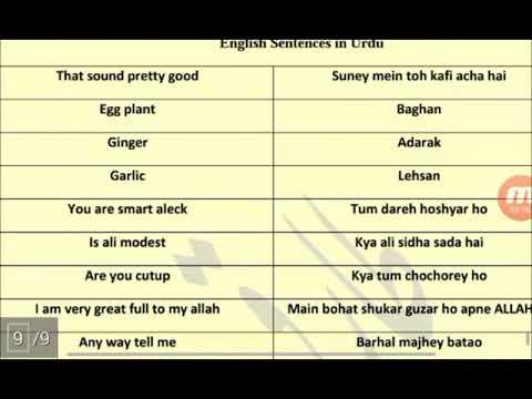 Speak Urdu ! Learn how to speak urdu language ! Free Urdu Speaking Course