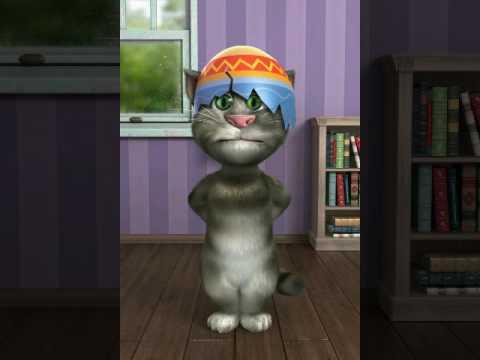 Beşiktaş seninle ölmeye geldik Tom kedi