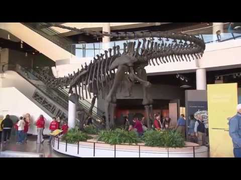 Discovery Park Of America | Tennessee Crossroads | Episode 2801.1