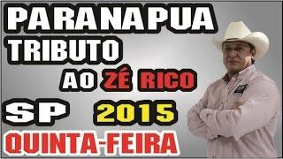 Almir Cambra -Paranapuã SP 2015 Tributo ao Zé Rico (audio)