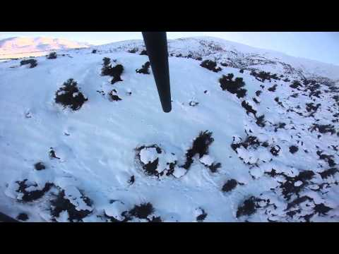 Helicopter Wallaby Shooting