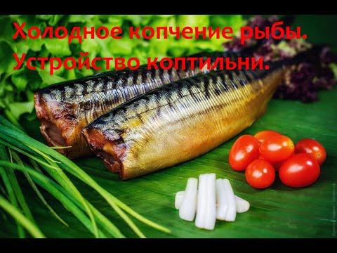 Холодное копчение рыбы. Устройство коптильни. Коптильня за 100 рублей!