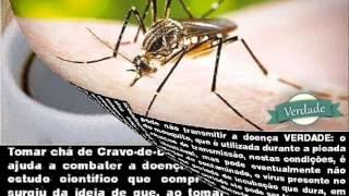 Baixar Mitos e Verdades da Dengue