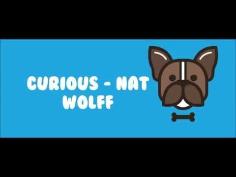 Curious Lyrics - Nat and Alex Wolff - Throwbacks
