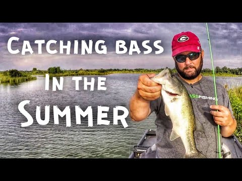 Bass Fishing In The Summer - Only 3 Hours To Fish