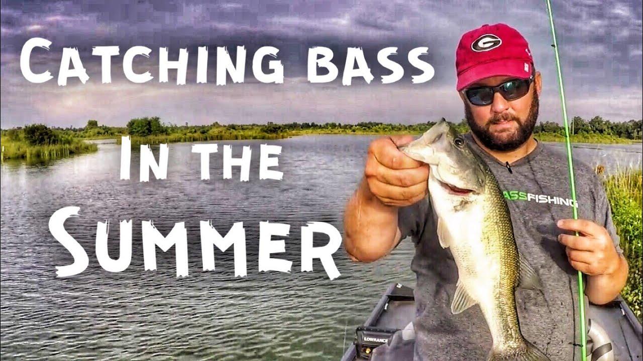 Howtofish Bassfishing Summerfishing