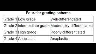 Tumor Grade vs. Tumor Stage - TNM Staging
