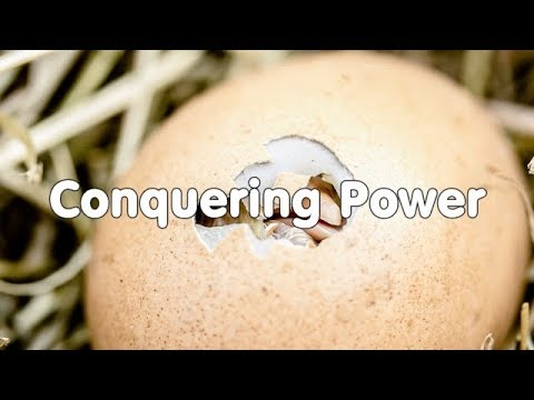 Conquering Power