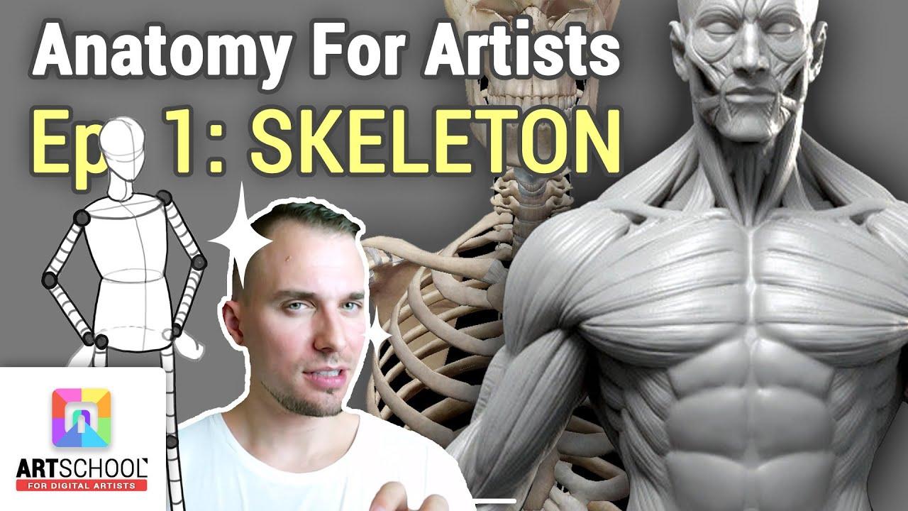 Download 🎓 ANATOMY FOR ARTISTS - SKELETON 101