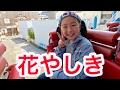 浅草の花やしきに行ってきました♪ の動画、YouTube動画。